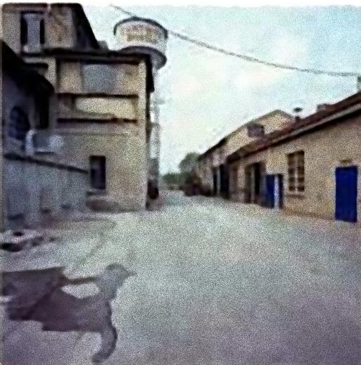 cartiere Binda - strada3