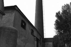 stabilimento_velvis2
